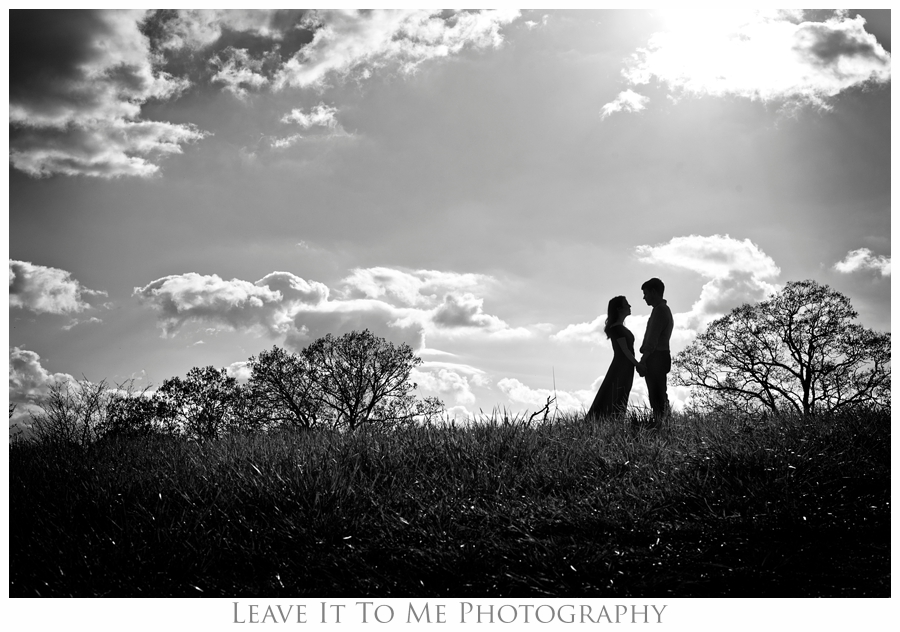 Destination Portrait Photographer_Asheville NC_Engagement Images 6