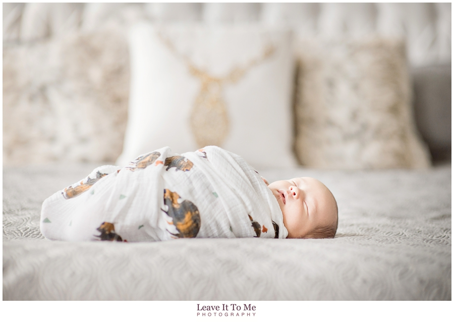 New Jersey Newborn Photographer_Newborn and Pets 1